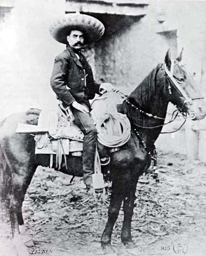 zapata-horse