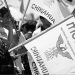 Asambleas Morena Chihuahua con AMLO
