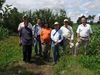 Foro sobre Maíz Transgénico en Texcoco este viernes, invitan especialistas