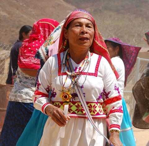 Ordenan libertad de indígenas presas por posesión de peyote