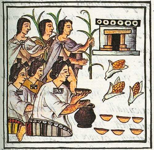 ¿Conoces el zacahuil o el uchepo? Tamales, conoce sus variedades