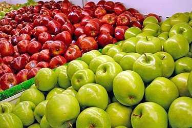 En riesgo, más de 150 mil toneladas de manzana: El Barzón
