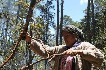 Que consulten a pueblos indígenas sobre la explotación minera