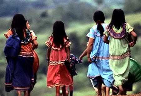 Pueblos indígenas defendiendo el territorio ante el narcotráfico