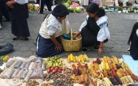 La genética y la sabiduría indígenas son claves de la biodiversidad: ONU