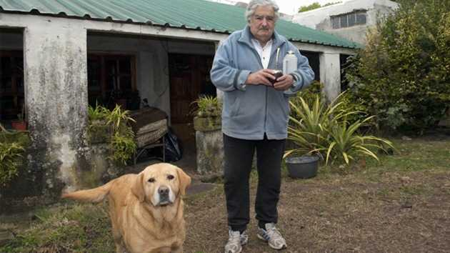 Gobierno de Mujica decreta multas y cárcel para los que maltraten animales