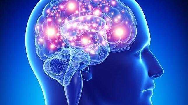 Científicos descubren que se pueden borrrar los malos recuerdos