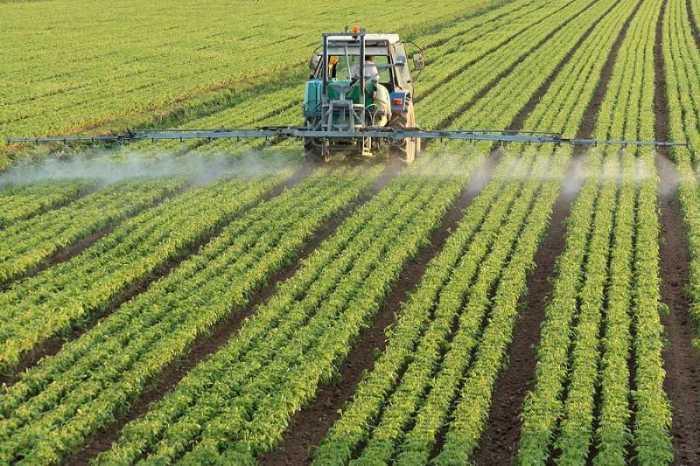 Crece uso de agroquímicos tóxicos de Monsanto y otras en Argentina: informe