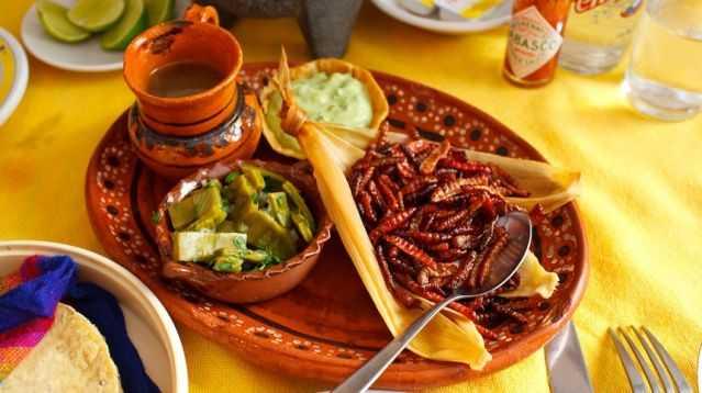 Cual_sera_el_alimento_del_futuro