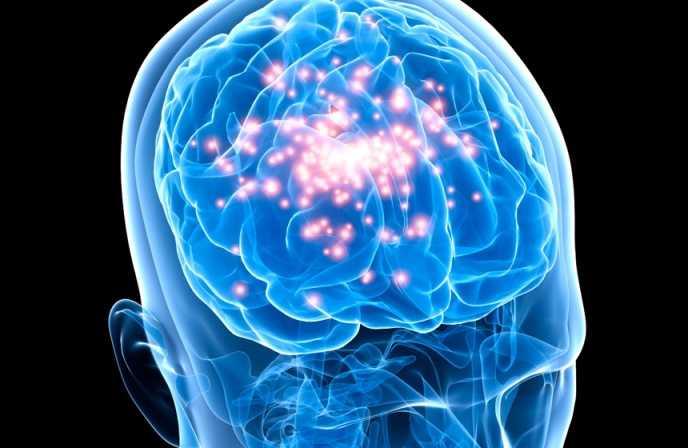 Rebelión de los científicos contra milmillonario estudio del cerebro