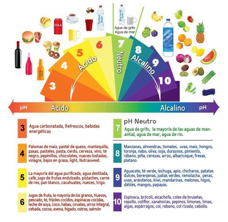 El pH en el cuerpo humano - Regeneración