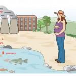 Contaminación de océanos por mercurio se eleva
