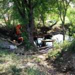 Derrame de petróleo dejará graves daños a la flora y fauna en Nuevo León: Profepa