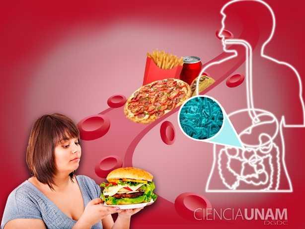 Sistema de salud mexicano: 10 años para colapsar por obesidad