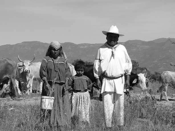 Pueblos-indigenas-en-Mexico-izamef-wordpress-com