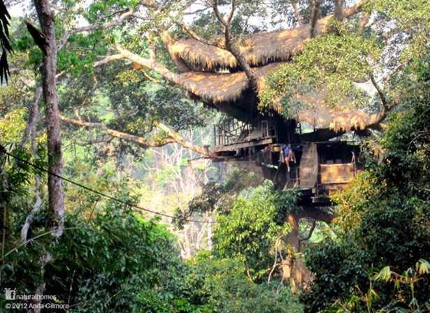 Fotos: Casas en árboles