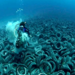 Islas de basura en la mar