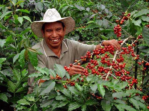"Agricultura campesina e indígena es ""climáticamente inteligente"""