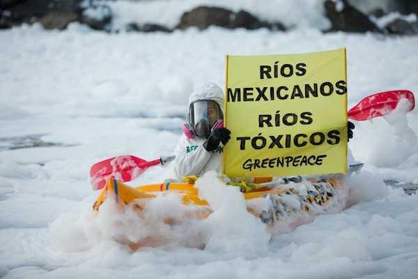 MEXICO GREENPEACE
