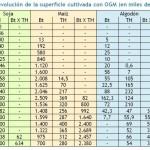 """Bióloga argentina: Los transgénicos son """"genocidas y ecocidas"""""""