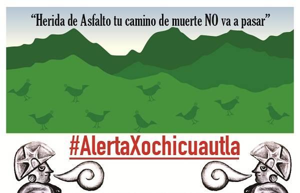 Llaman a campamento en defensa del bosque en Xochicuautla