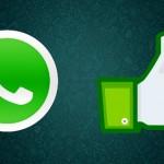 Whatsapp podría incluir el botón 'Me gusta'