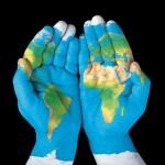 El movimiento contra el cambio climático crece día a día