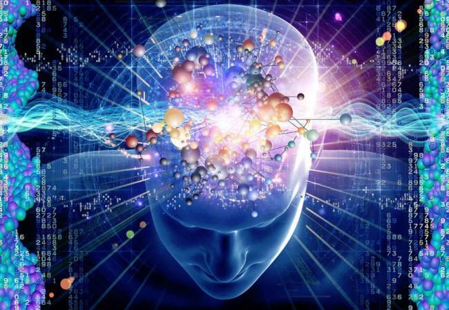 recuerdos en el cerebro