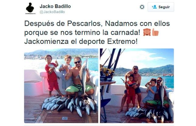 Integrante del Partido Verde presume pesca ilegal de tiburones