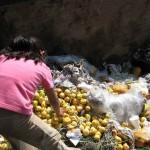 Con sólo el 25% de la comida desperdiciada podría eliminarse el hambre en el planeta