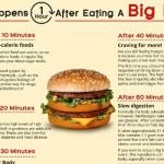 ¿Qué sucede una hora después de comer una hamburguesa?