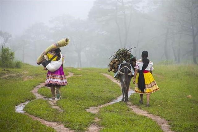 Pobreza entre indígenas de Guerrero crece de forma alarmante