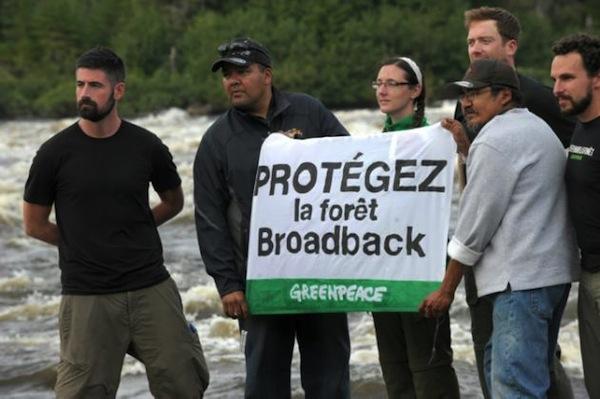 Nativos de Canadá contra la deforestación