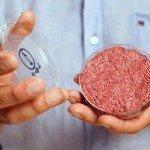 Posibilidades de la carne creada a partir de células madre