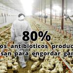"""Descubren en China bacteria que llevaría al mundo al borde de """"una era post-antibióticos"""""""