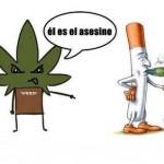 Y usted, ¿ha fumado marihuana?