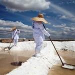 Algunos usos prácticos de la sal  (video)