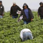 50% de los trabajadores en México gana 6 mil pesos al mes: Investigadores
