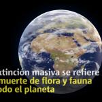 Se aproxima una sexta extinción masiva (VIDEO)