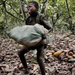 Las 7 marcas de chocolate que utilizarían trabajo esclavo infantil