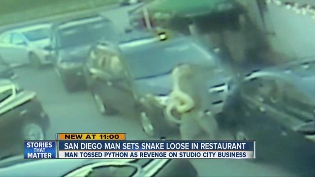 Cliente enfadado suelta una serpiente gigante en restaurante
