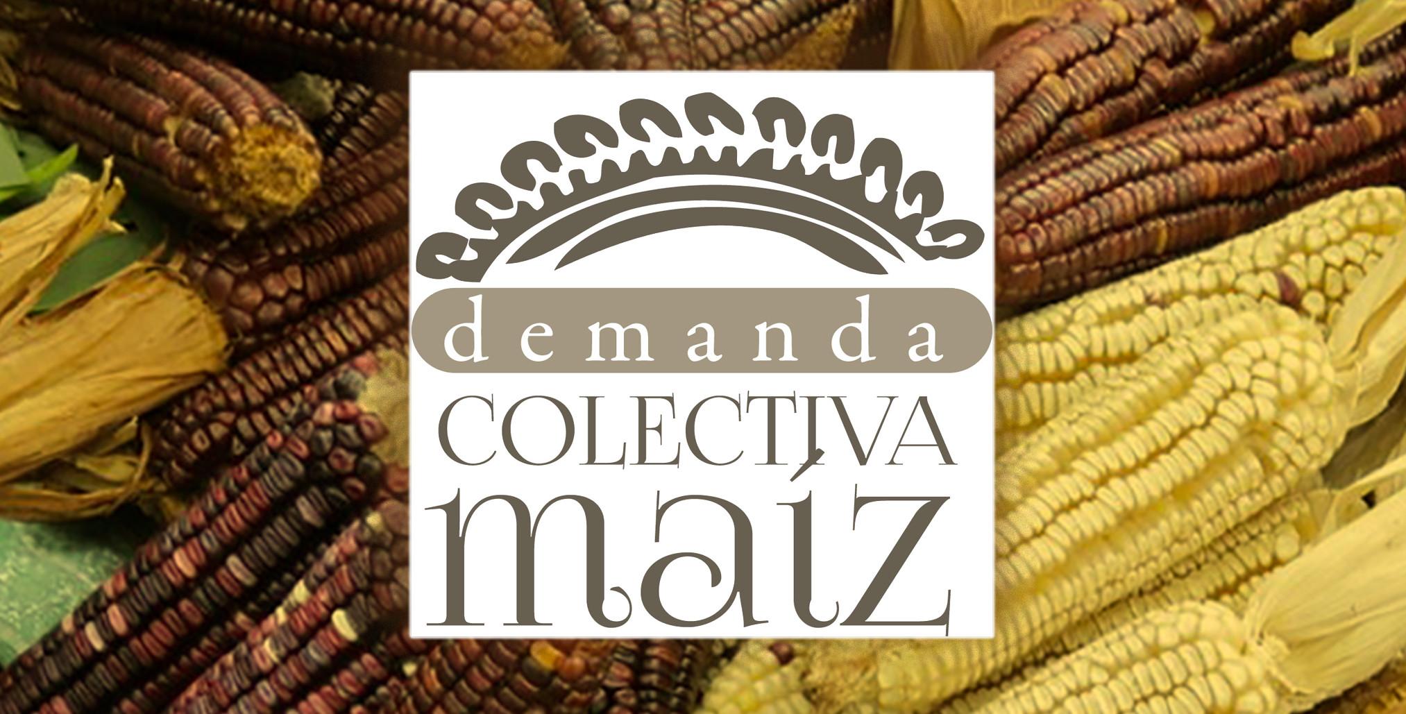 logo DCM-3