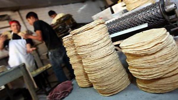 precio tortilla tortillería alimentación 17, aumento del dólar
