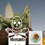 Conoce los argumentos concretos de la defensa del maíz