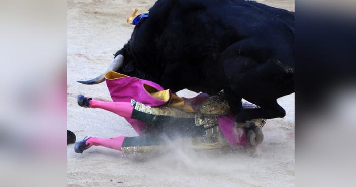 ONG exige fin de programa de corridas en TV abierta; cuesta 1.5 mdp a mexicanos