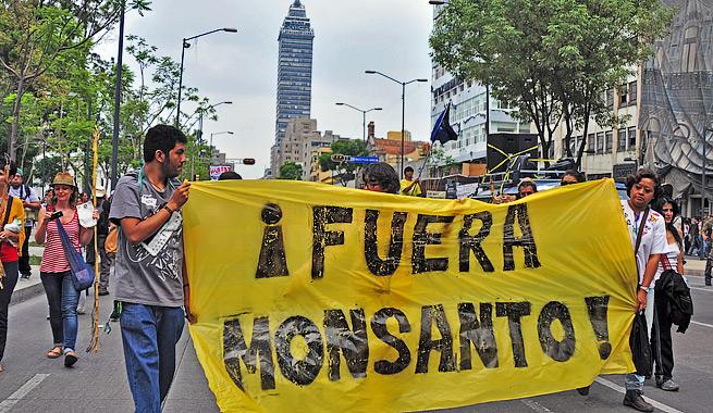 Marchas contra Monsanto en 400 ciudades de 40 países