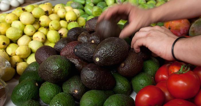 Precio del aguacate no baja, el kilo llega a 90 pesos