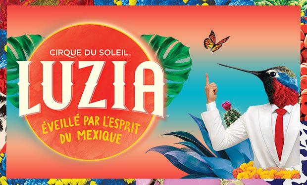 Creadores escénicos harán protesta los 47 mdd del Cirque du Solei