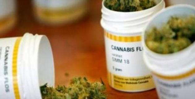 Hoy aprobará Senado uso médico de la marihuana