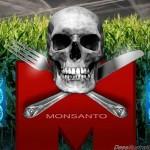 """Monsanto enfrentará """"juicio del siglo"""" en La Haya"""